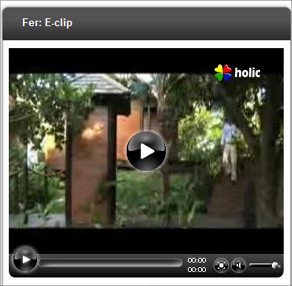 eclip.png